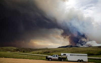How To Protect Your Car From Wildfire Ash